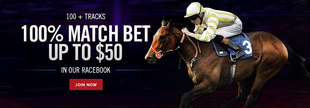 bet online with the leader in online horse racing boo dallas cowboys